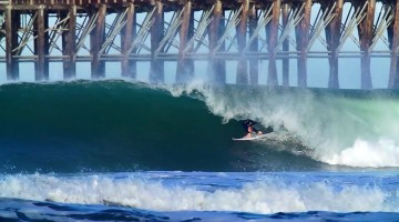 taylor-knox-california